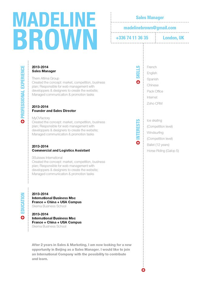 A CV format made for professionals of all sectors