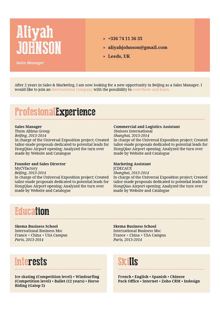 One of the best professional resume samples out their to impress the reader