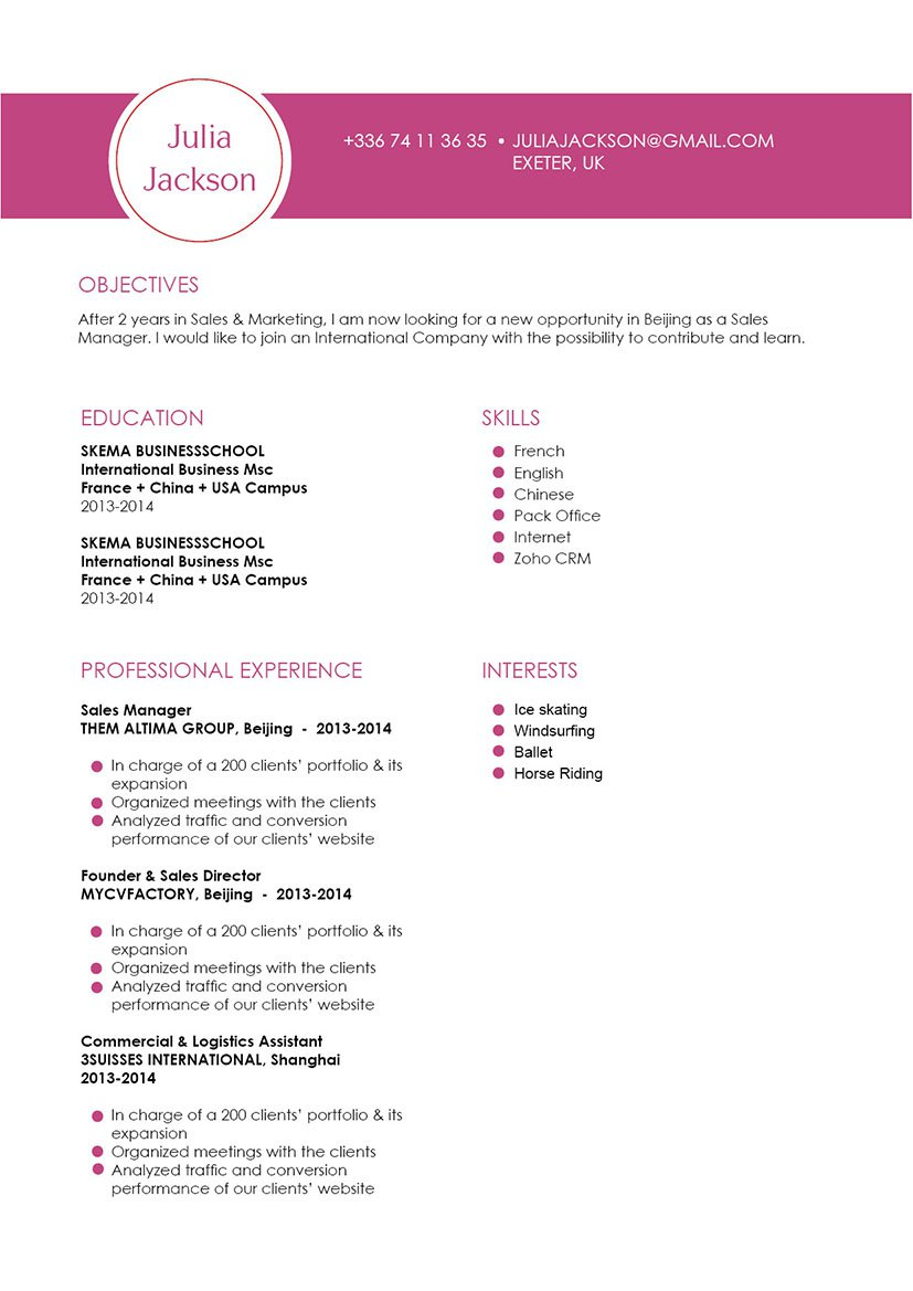 A professional CV format that is sure to make your template a real show-stealer!