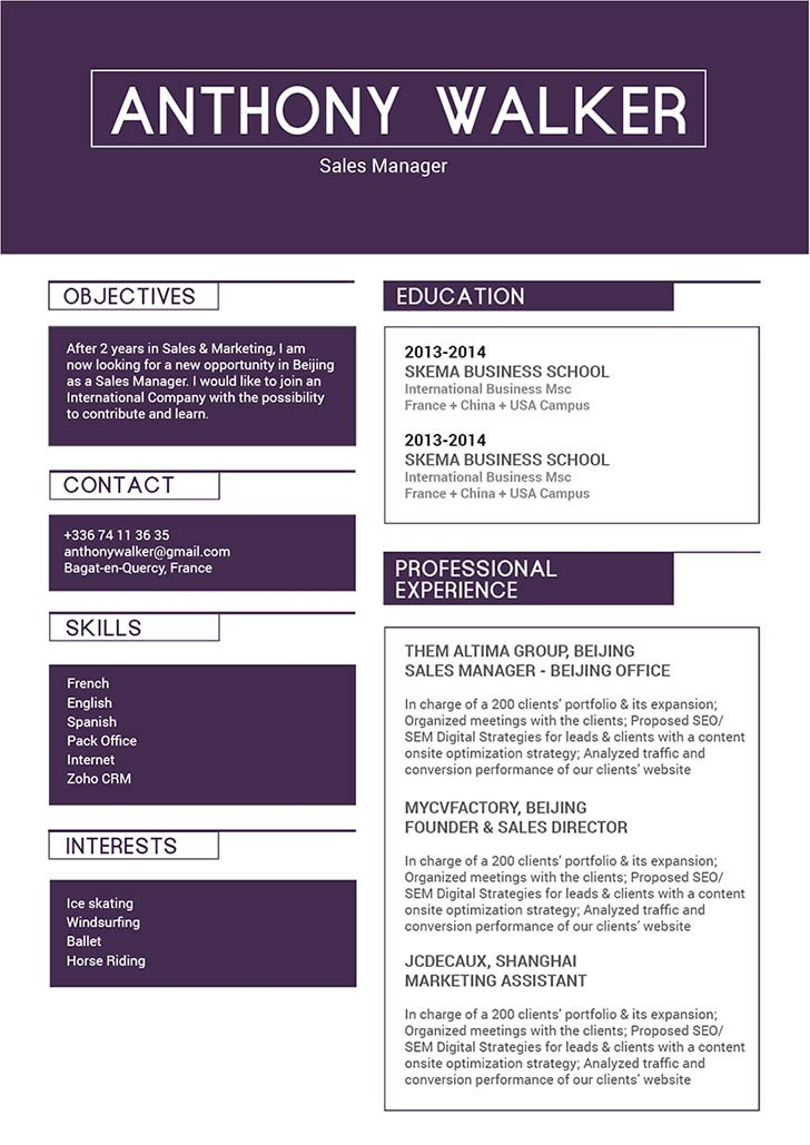 A great resume template with a great format for professionals!