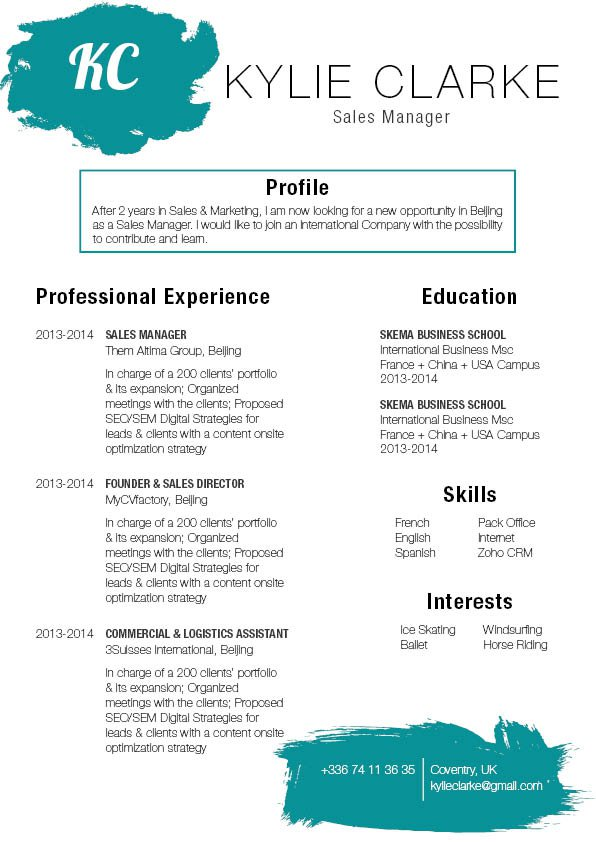 This functional CV format has a format and layout made for professionals!