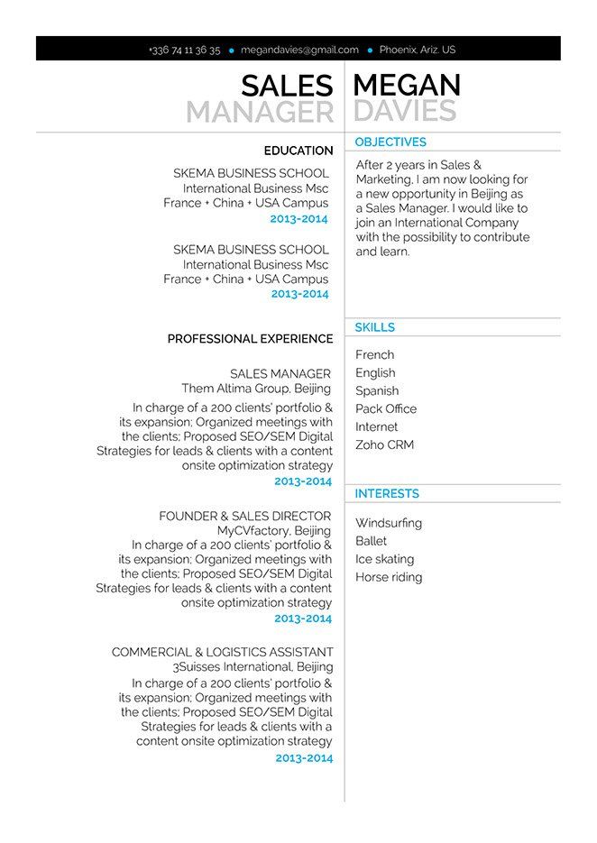 Professional resume template to help you get that dream job