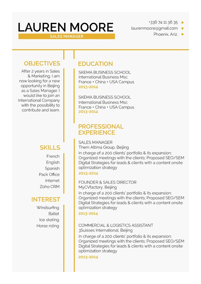 Very Well Written Standard Resume Format  Standard Resume