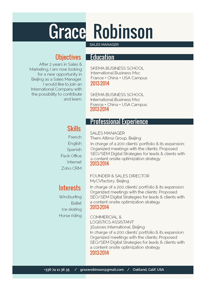 The format is clean and functioal making for a great resume!