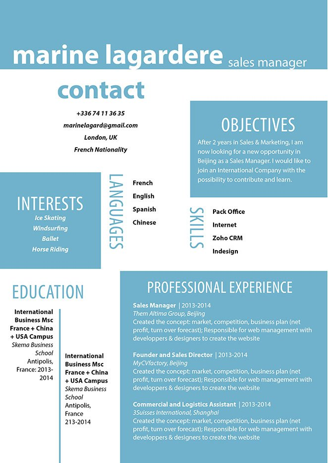 Clear and consice -- a professional cv with the ideal format!
