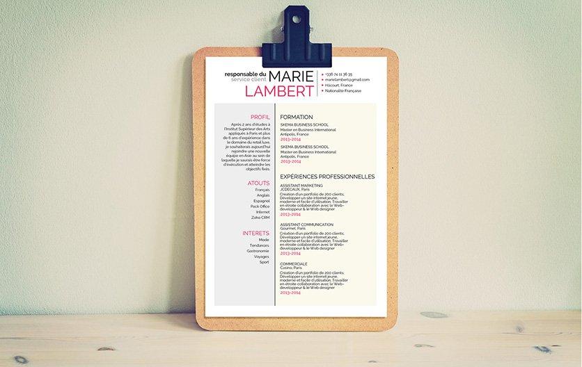 Exemple de CV utilisant principalement le bleu et le rose dans sa mise en page pour présenter comme il se doit le candidat.