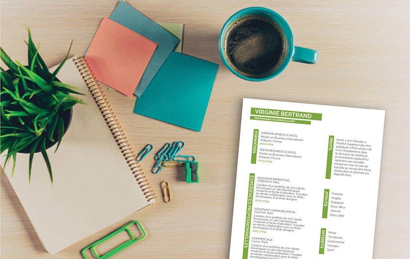 Un modèle de CV créatif, précis, bien hiérarchisé et complet