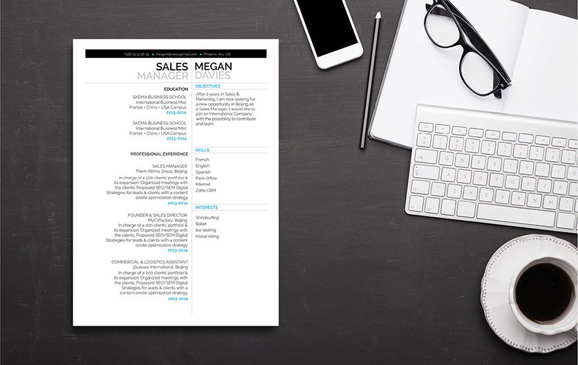 Great design and format, all relevant points are seen in this professional resume template
