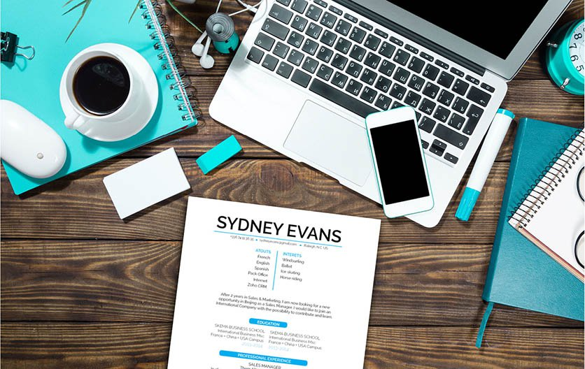 The best resume layout with a creative choice of styles and designs